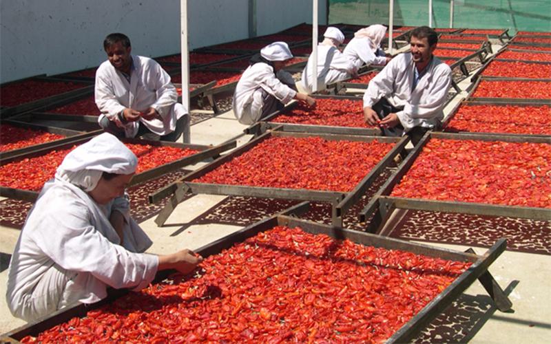 Kandahar Food Zone (KFZ) - Drying Fruit 800px