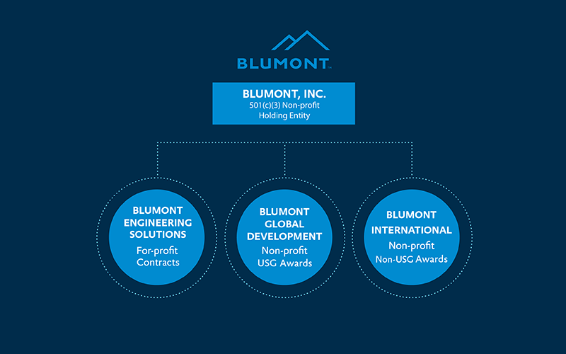 Blumont Structure Diagram